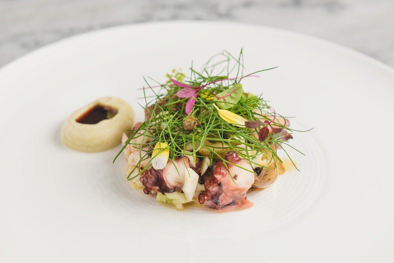 Chou Chou以春季最肥美的章魚入菜。圖/Chou Chou提供