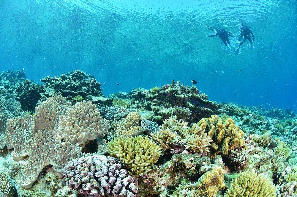 ▲沖繩慶良間群島浮潛。(圖/Tripbaa趣吧!亞洲自由行專家)