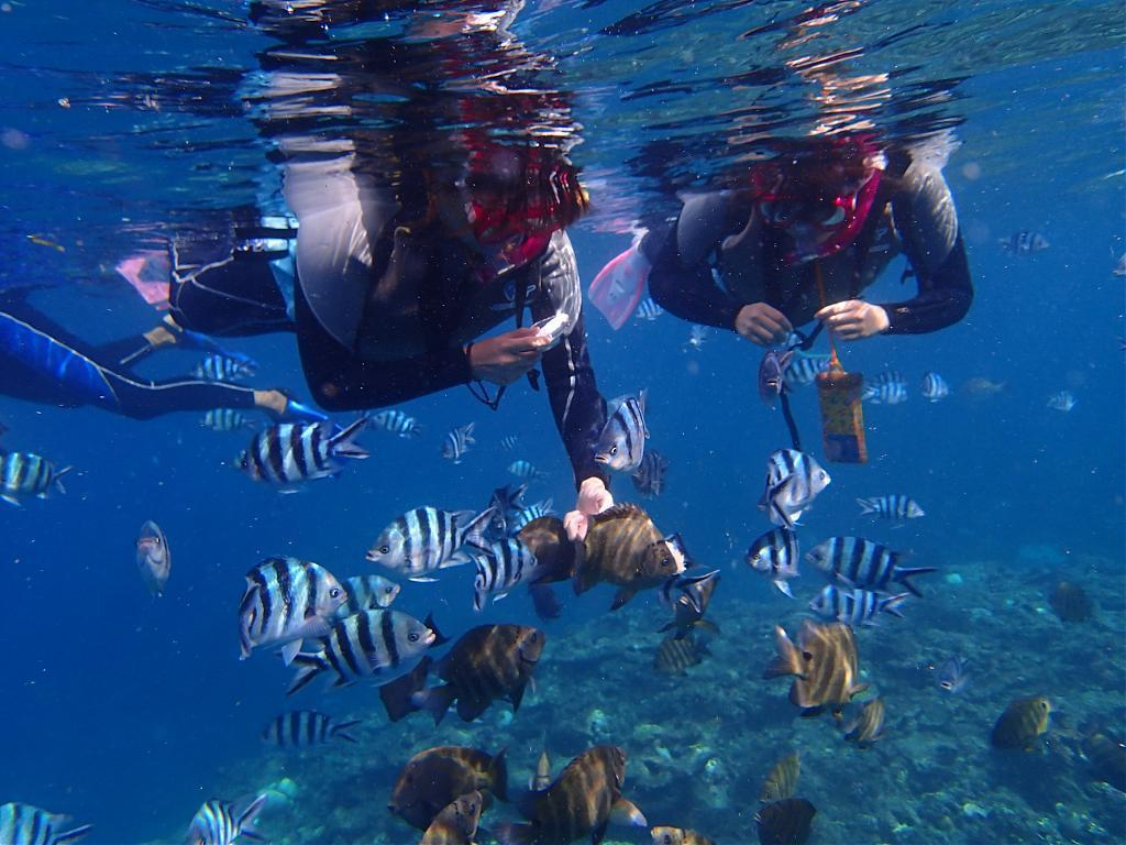 ▲沖繩青洞浮潛。(圖/Tripbaa趣吧!亞洲自由行專家)