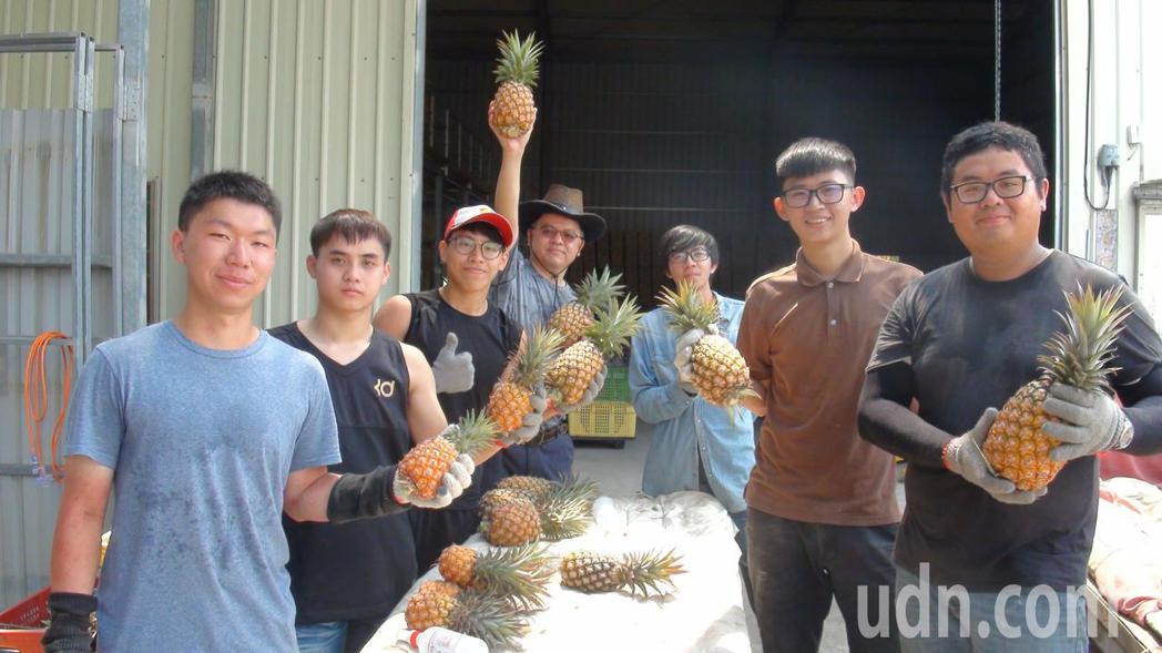 樹德科大行銷系多名馬來西亞籍學生,為學習行銷真工夫,假日投入鳳梨園,實地從事生產...