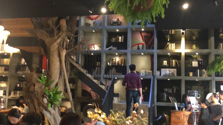 台中西屯區去年誕生一家別開生面的書店「樂樂書屋」,書屋內有一棵百年榕樹直直貫穿屋...