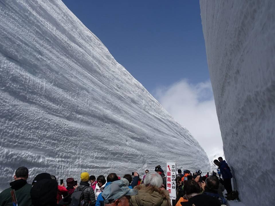 立山黑部日前因天候不佳取消開山儀式,放晴後仍吸引大批人潮。圖/立山黑部提供