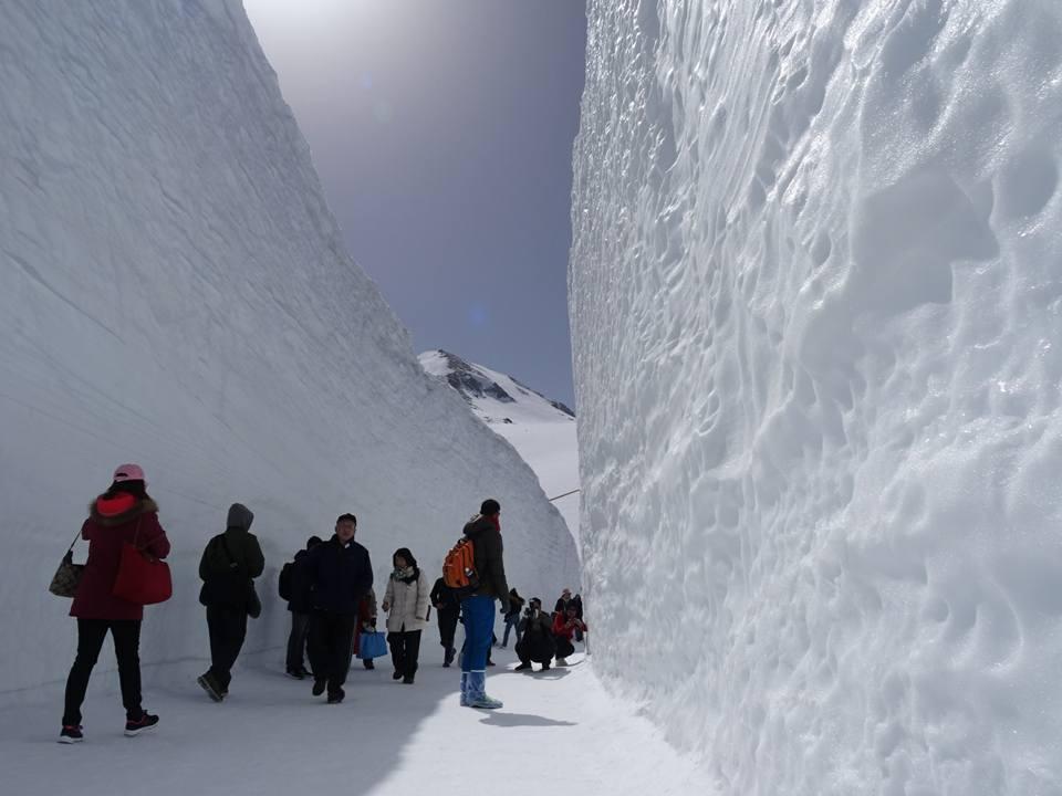 漫步於雪之大谷內,可以近距離欣賞雪璧美景。圖/立山黑部提供