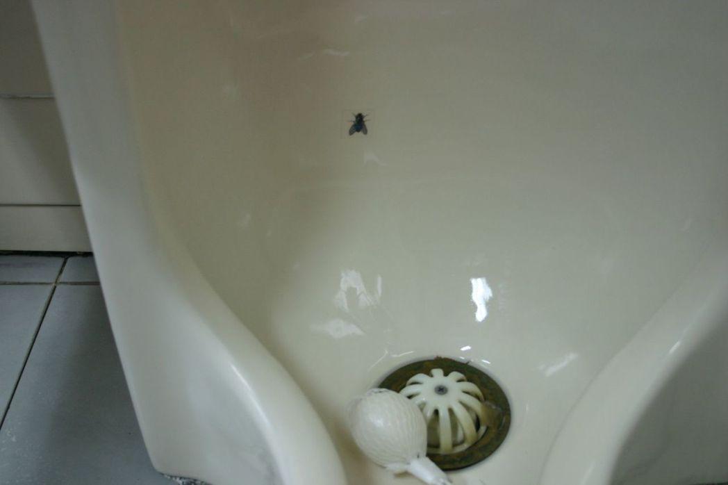 成大醫院男廁尿盆有小蒼蠅貼紙,男士尿尿對準小蒼蠅,較不會濺出盆外。 圖/本報資料...