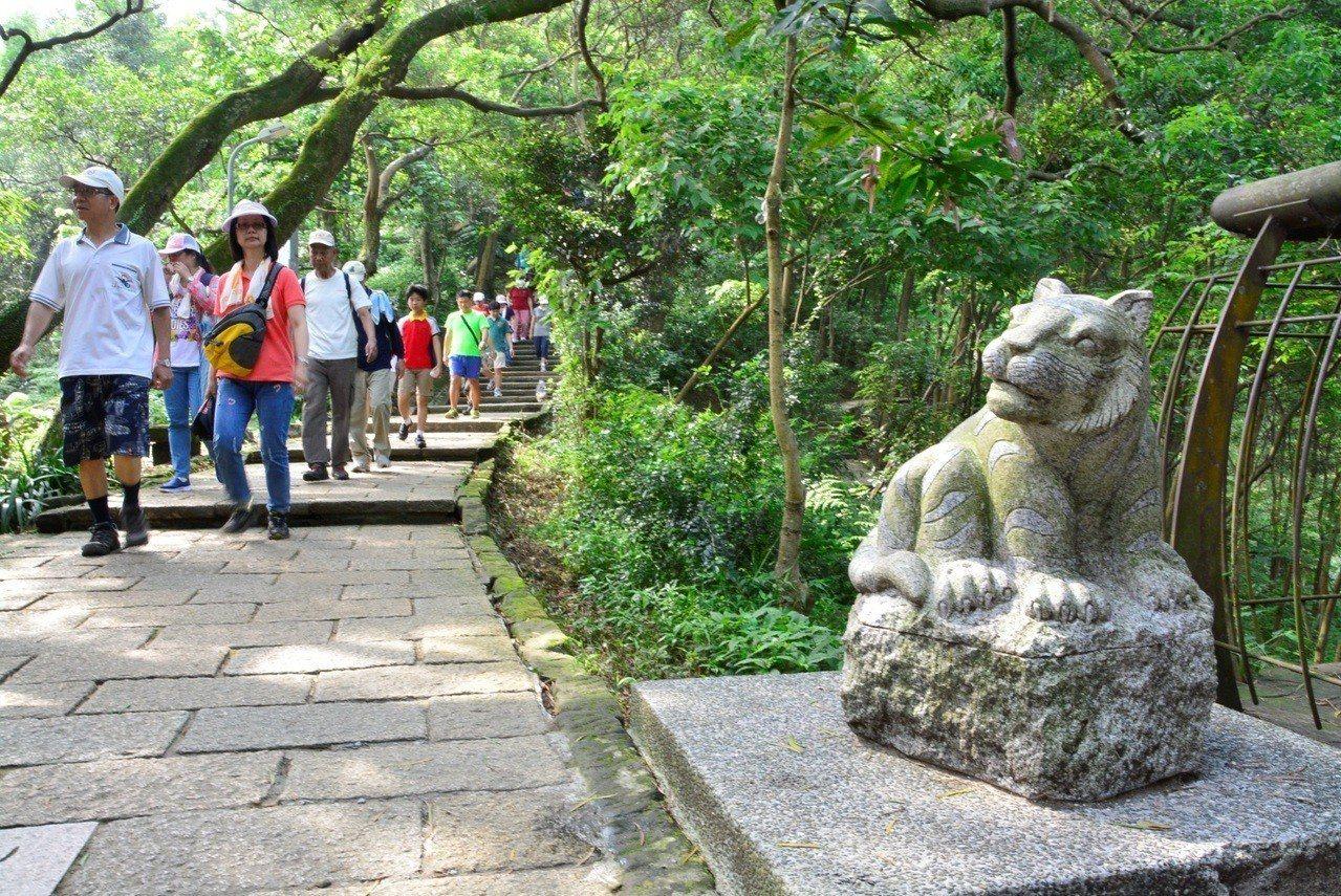 松山慈惠堂舉辦淨山健行活動,邀請民眾到虎山步道。 圖╱松山慈惠堂提供