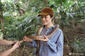 大陸女星孫儷19日在微博貼出在澳洲與大蟒蛇的合照,她說「當我提出要和這個小可愛合影的時候,在場的小伙伴們都驚呆了……有人甚至當場腿軟,真的有這麼可怕吗?難道只有我一個人覺得他很可愛嗎?」照片上的孫儷...
