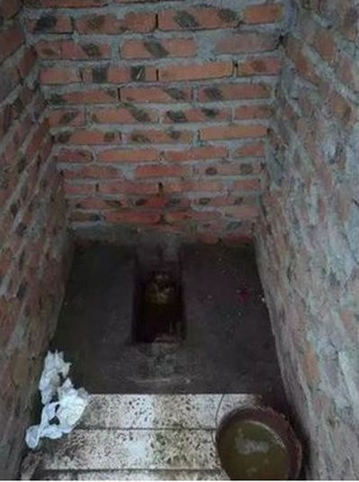 大陸北方農村的「旱廁」。 圖/取自齊魯晚報