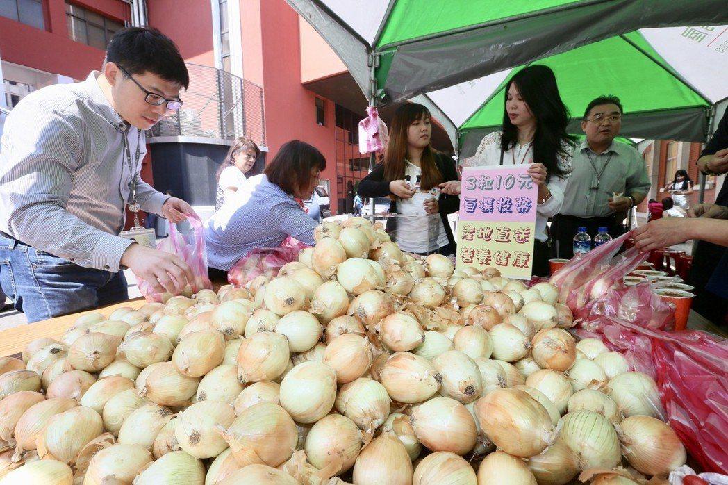 你今天吃洋蔥了嗎?今年國產洋蔥產量過剩,價格也比較便宜。 記者林伯東/攝影