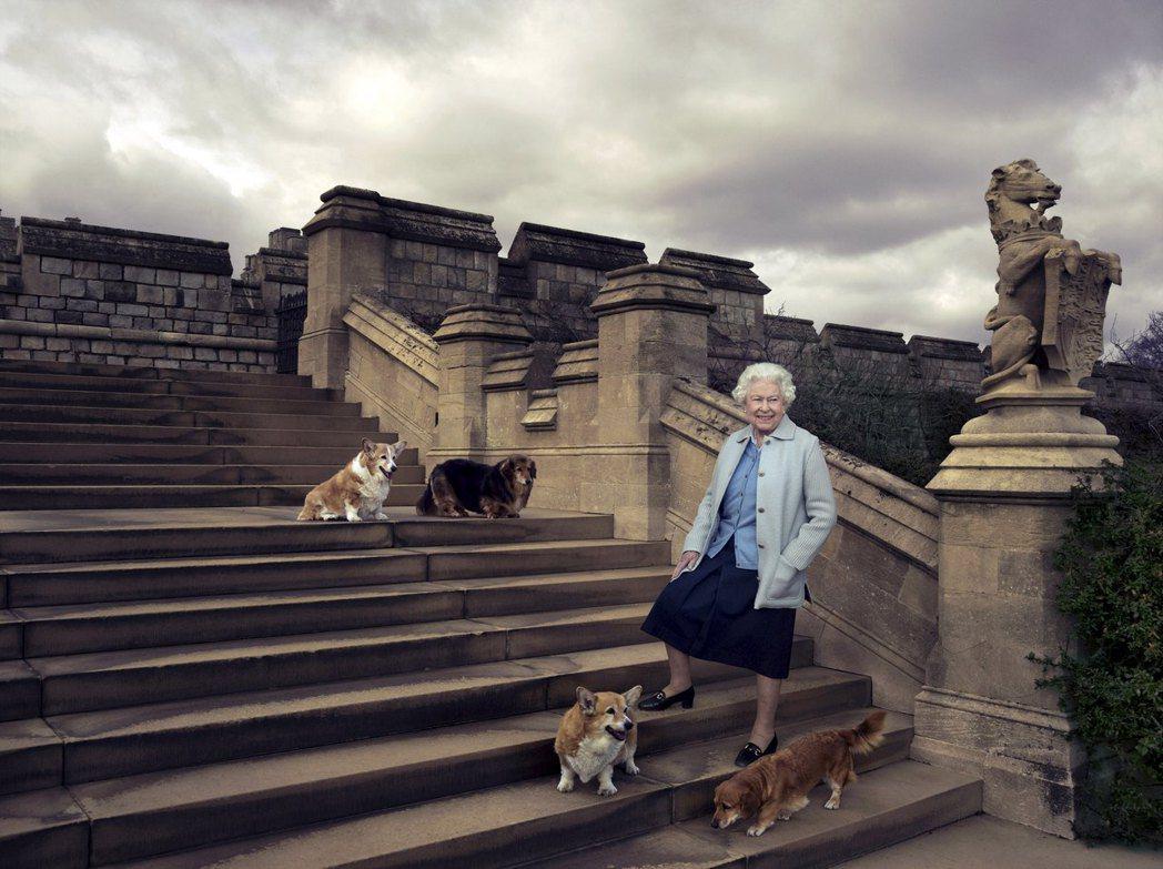 狗狗是女王忠實的夥伴。 圖/路透社
