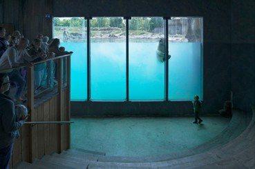 李娉婷/「很科學」的藝術創作——訪《白熊計劃》攝影師羅晟文