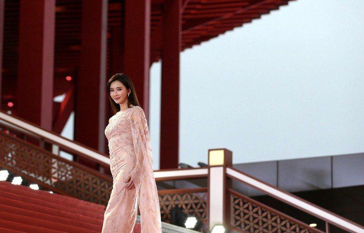 林志玲展現女神丰采。圖/摘自微博