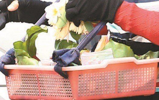 玉蘭花示意圖。圖片來源/聯合報系資料照