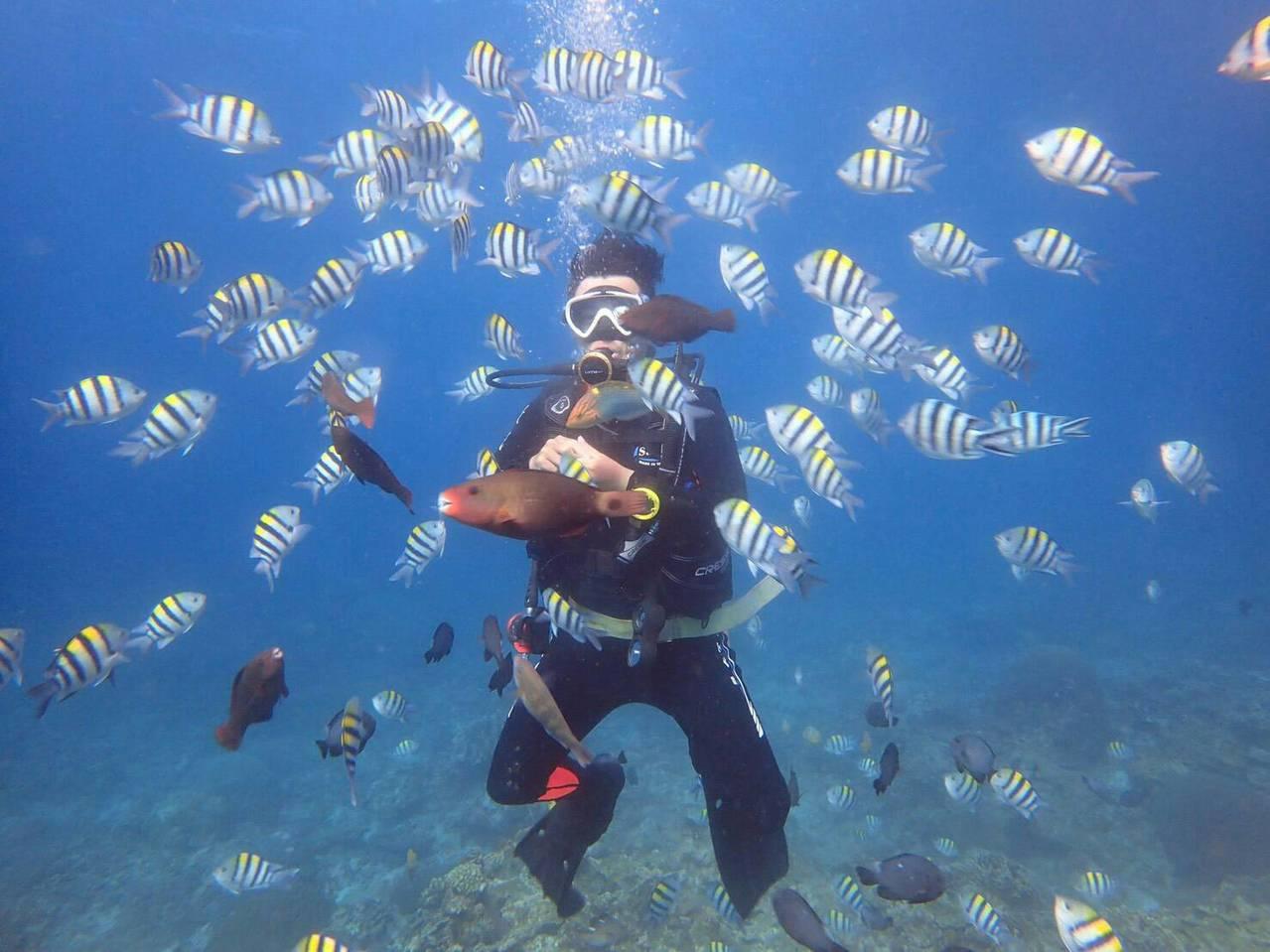 ▲綠島浮潛。(圖/Tripbaa趣吧!亞洲自由行專家)