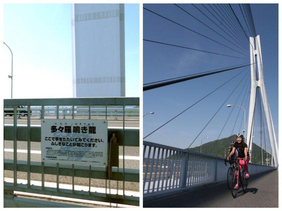 ▲橋上的龍鳴現象解釋牌。 (photo by 達叔)