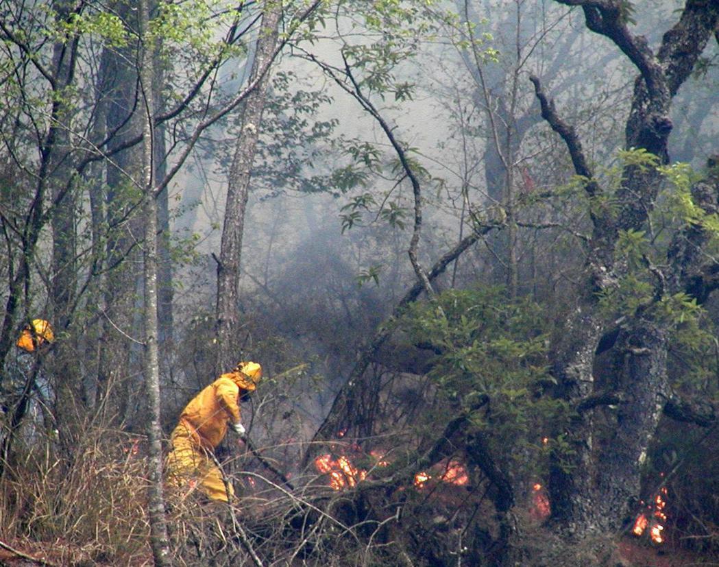 山林、雜草火警出勤耗費的時間與人力並不少,2002年梨山火災,消防員在沒有充分水...