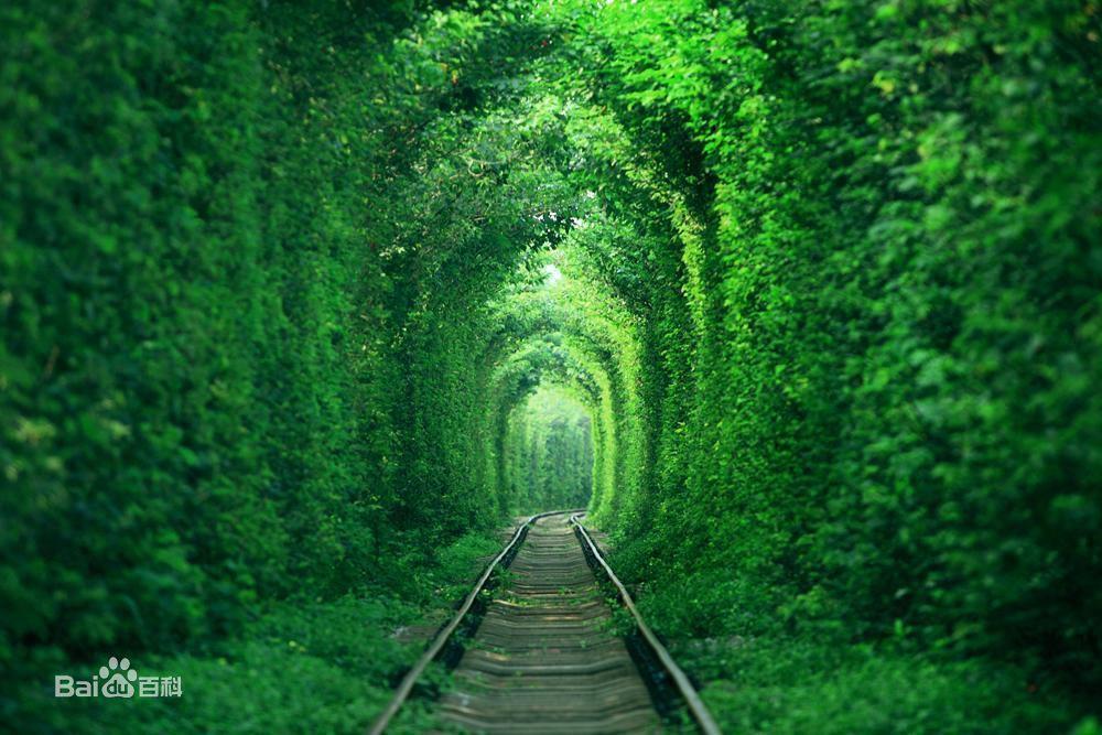 南京愛情隧道,被網友譽為「最清新的鐵路」。 圖/摘自百度