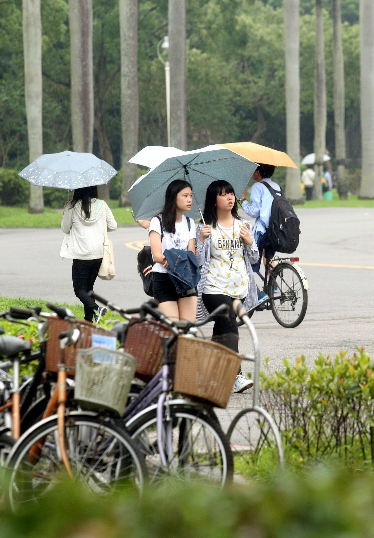 圖為大學校園。聯合報系資料照/記者屠惠剛攝影