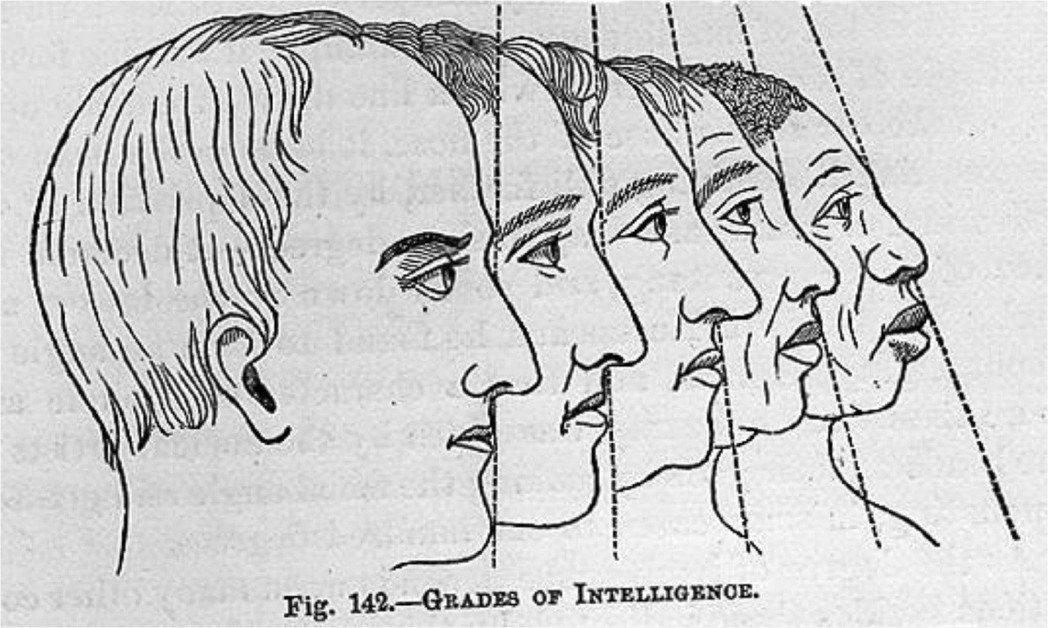智力的分級,圖為19世紀末的「顱相學」參考書。 圖/維基共享