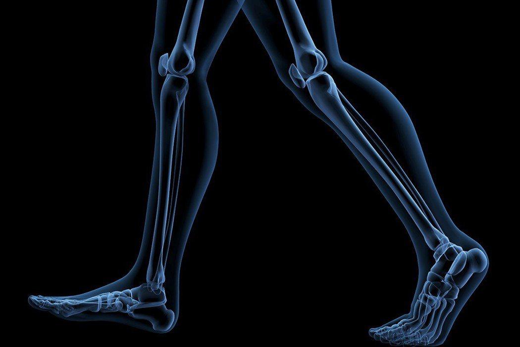 路不只是關係到腳部的動作而已,也會牽動全身的肌肉、骨骼與神經系統。 圖片/ing...