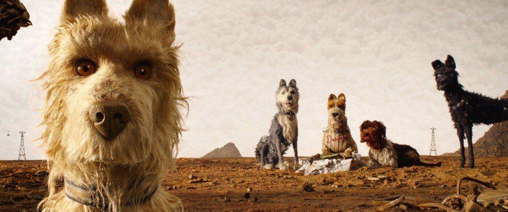 美國鬼才導演威斯安德森備動畫新作《犬之島》。圖/金馬奇幻影展提供