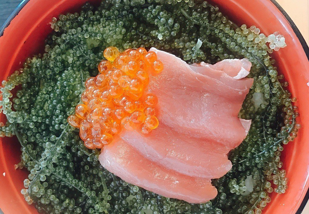 ▲沖繩海葡萄。(圖/Tripbaa趣吧!達人帶路)