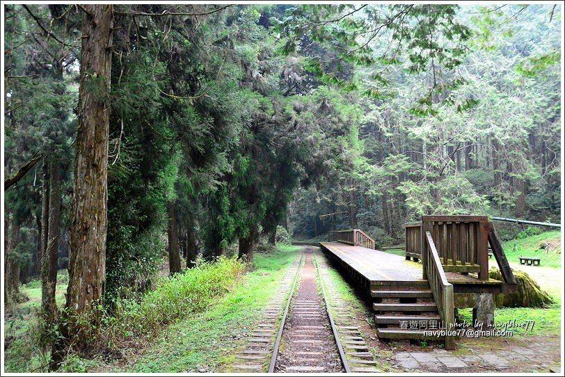 ↑水山車站附近環境超清幽,會讓人想賴著不走。