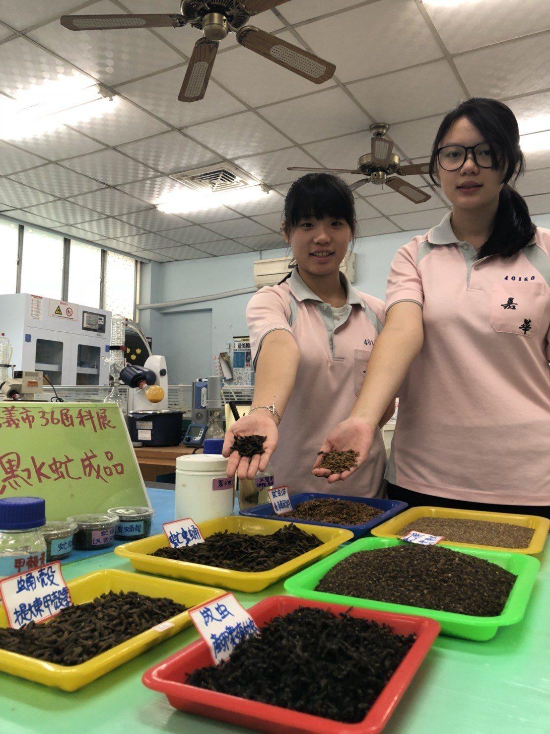 國三學生許雅玟(右)、曾琬婷以「環保之星-黑水虻的養殖及應用」為主題,也引起評審...