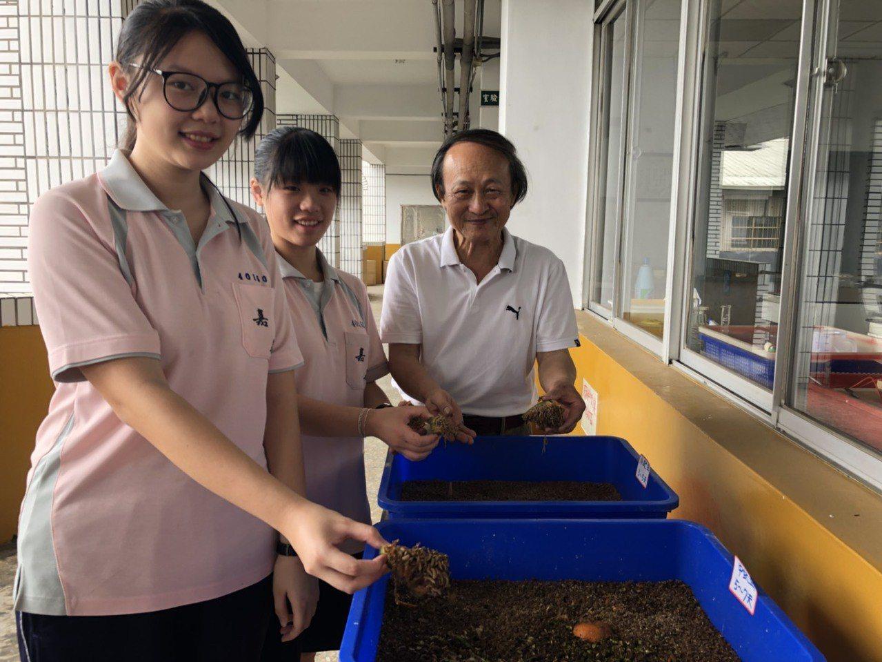 國三學生許雅玟(左)、曾琬婷(中)以「環保之星-黑水虻的養殖及應用」為主題,也引...