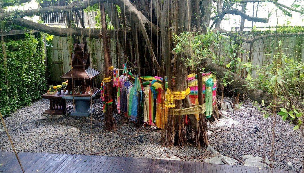 泰國常見人們用七彩絲帶圍繞大樹,用以祈求並表示崇敬。 圖/作者許純鎰攝影