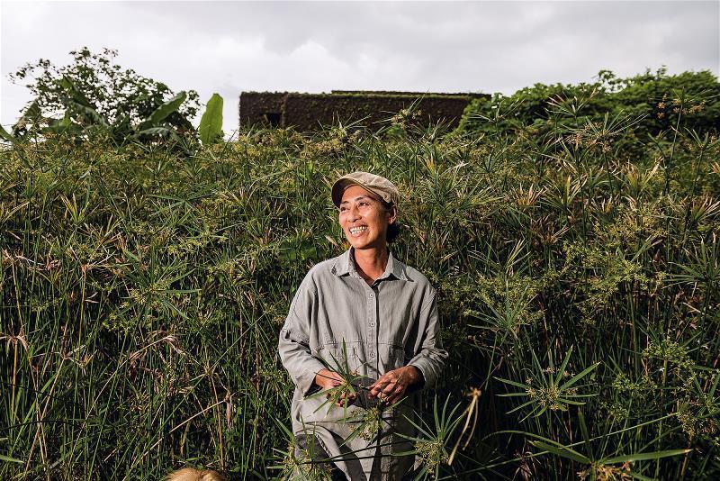 舒米復育輪傘草,同時也把阿美族傳統的編織工藝找回來。