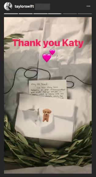 泰勒絲感謝凱蒂佩芮送來的禮物,卻意外曝光和解信。圖/摘自IG