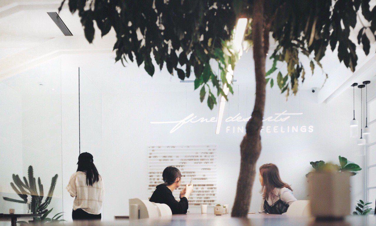 奇維奇娃店內以植栽、白牆、木質為設計元素,簡約舒服。記者沈佩臻/攝影