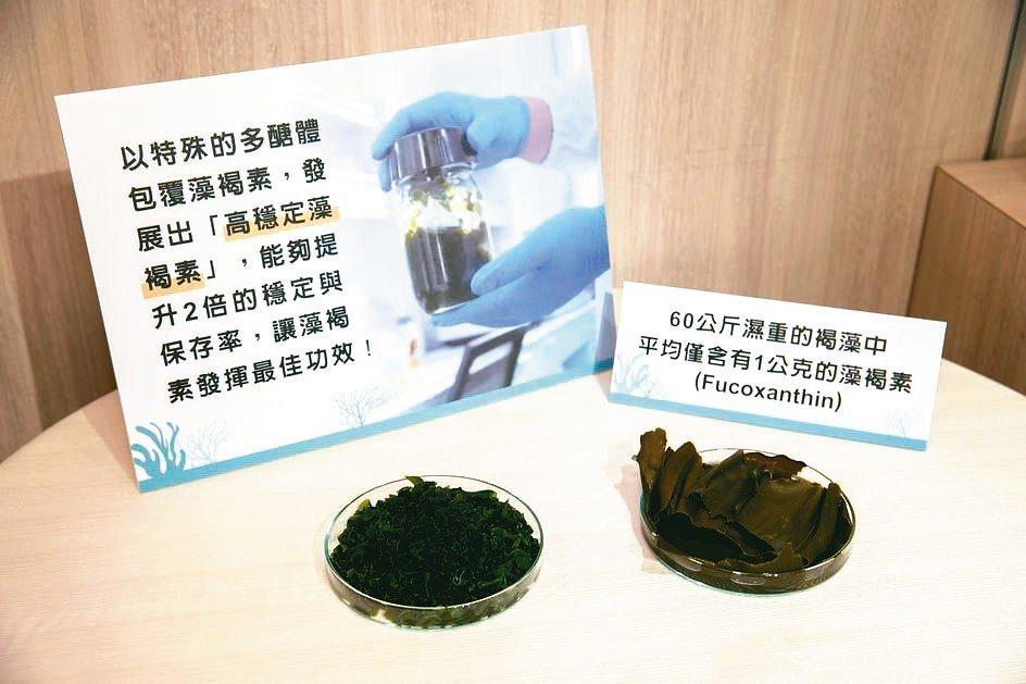 從褐藻萃取的「高穩定藻褐素」經人體臨床實驗證實能護肝降脂、改善脂肪肝及胰島素抗性...