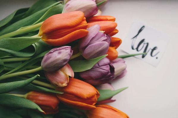 【小孟塔羅】母親節將至!今生對母親做什麼 晚年擁有好福報?