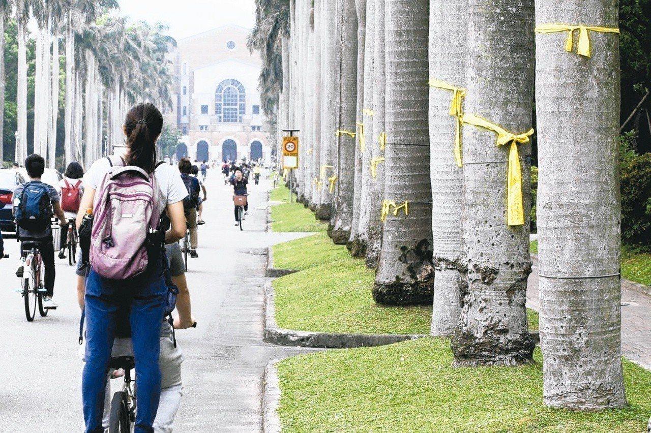 台灣大學將於明天召開第二次臨時校務會議。聯合報系資料照