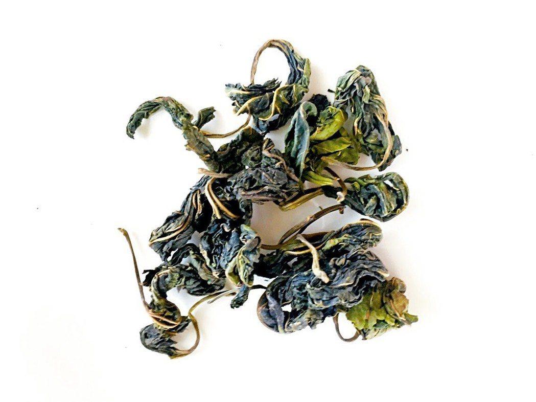 製成茶葉的桑葉。 圖╱朱慧芳