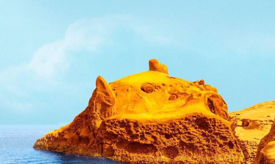這叫豬頭岩還是豬哥岩好?圖/和平島公園提供