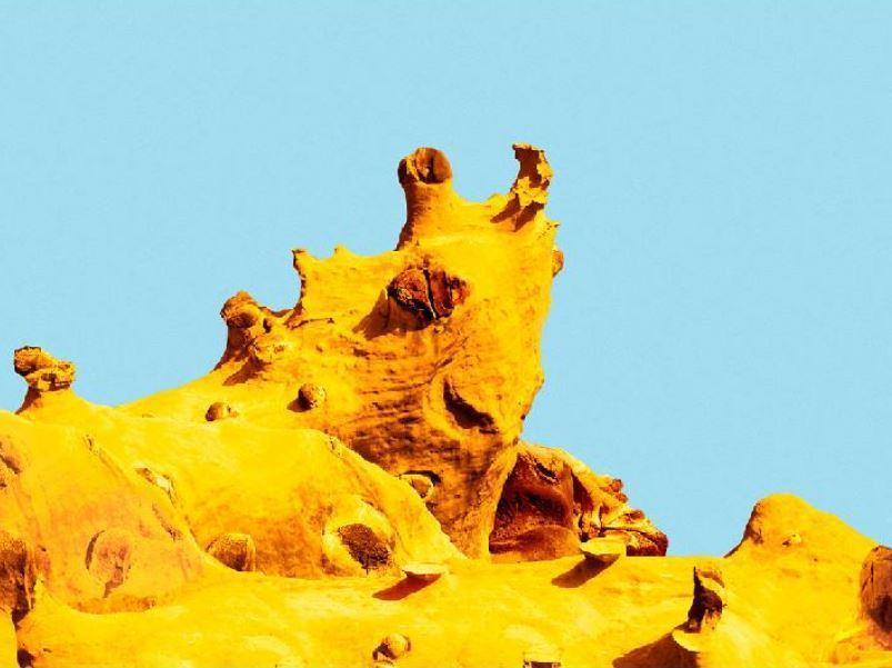 這像海兔岩還是犀牛岩?圖/和平島公園提供