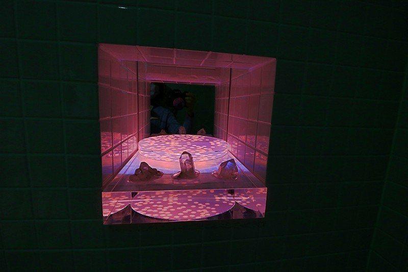 館內最小也最容易忽略的常設作品就藏在男廁,Pipilotti Rist結合聲光影...