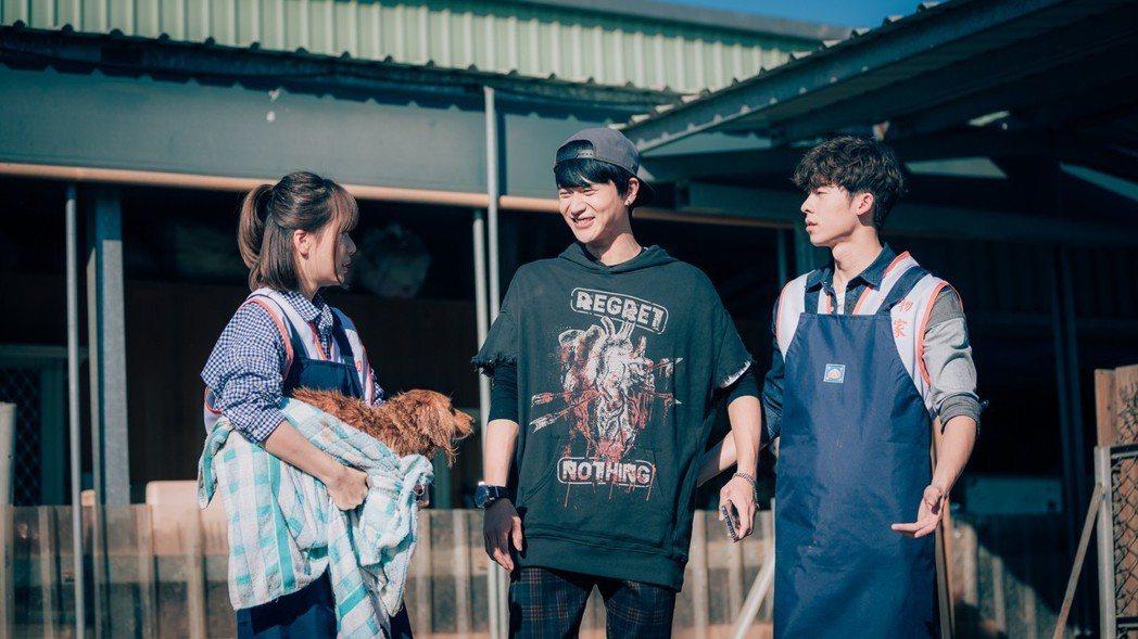 許光漢(右起)、劉冠廷、方語昕一同到流浪動物之家拍攝。圖/歐銻銻娛樂提供