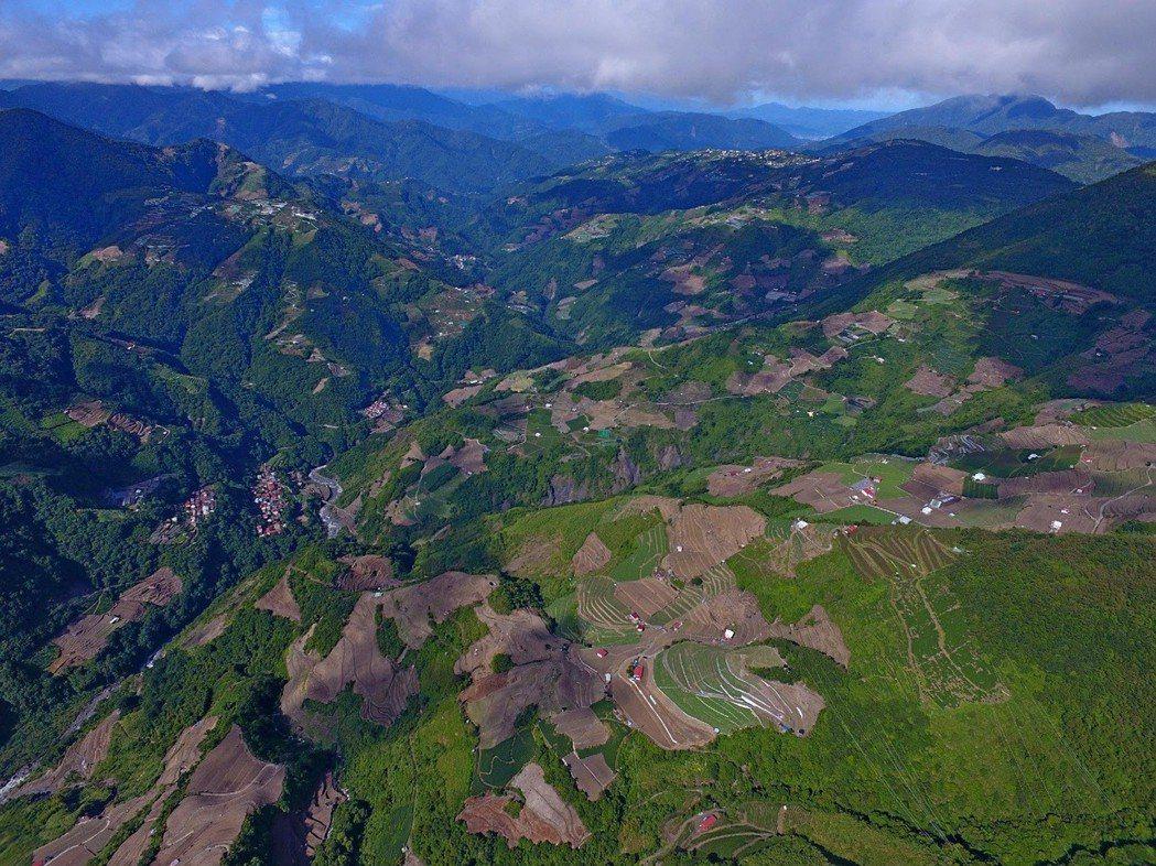 再往上走,則可清楚看到高山農業開發對土地的破壞。從合歡山翠峰地區附近,沿著濁水溪上游兩岸,一直到下游的清境地區,都可見被開發後的慘況。 圖/作者自攝