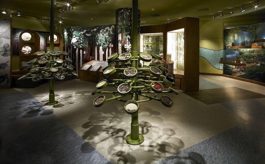 (圖)士耕室內設計 作品 冬山森林生態館
