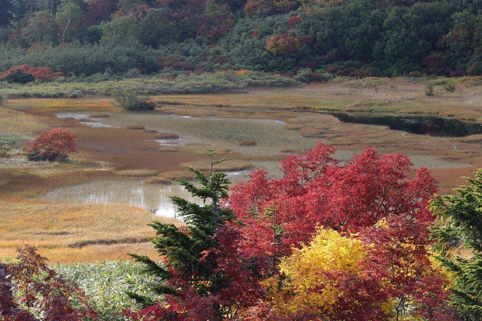 ▲由山屋的露台看出,可以看到整片入秋的高谷池!(Cliff 攝)
