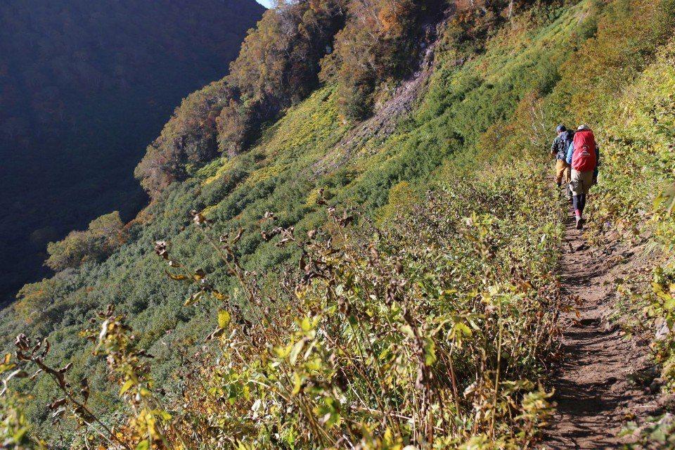 ▲前往妙高山的路況開始接近我們中級山的路型,但好走多了,同時也不泥濘。(Clif...