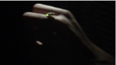 高市岡山區阿公店森林公園夜晚發現復育成功的螢火蟲。圖/高市工務局提供