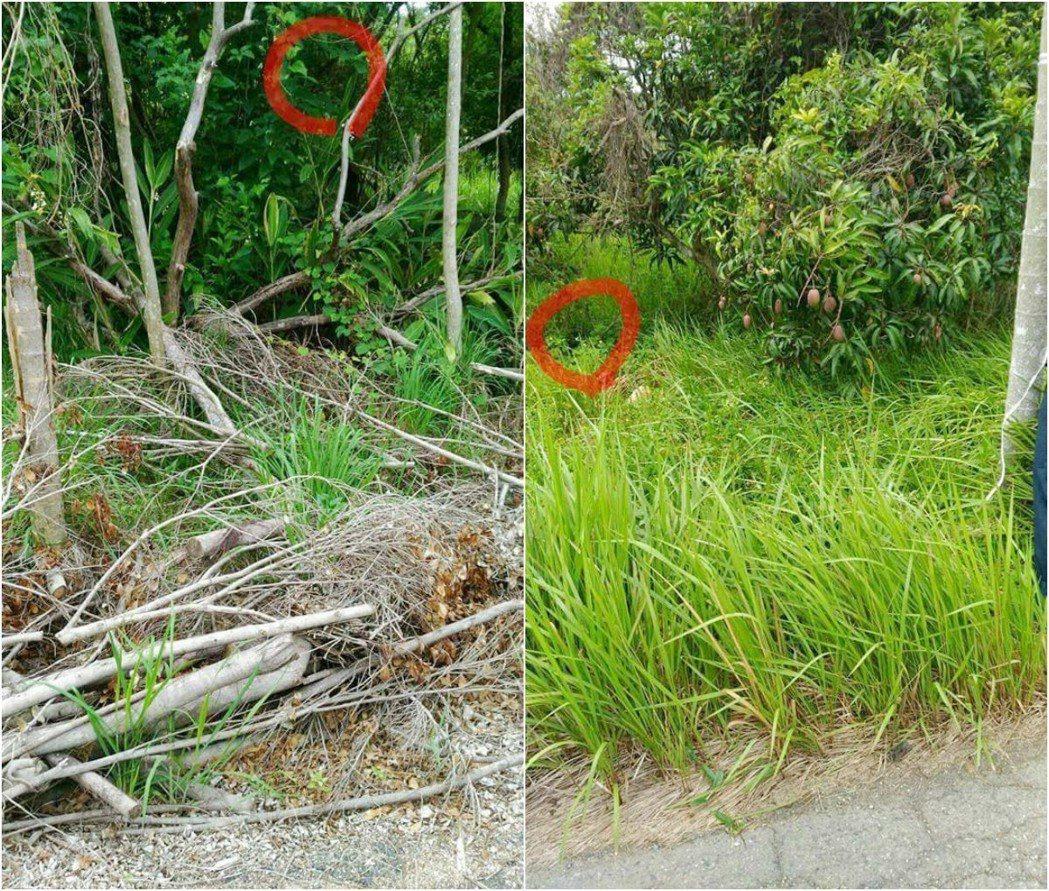 網友在廢農地拍了幾張照片,回家後整個人精神變很差。爆料公社