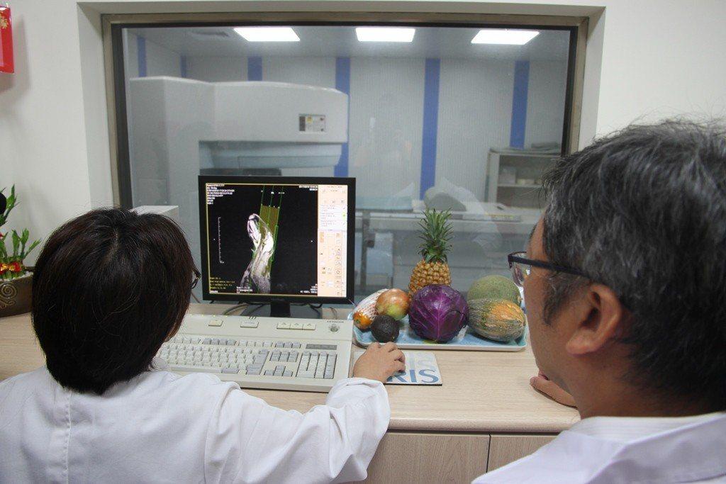 元培影像醫學中心進行兔子檢測畫面。 元培/提供
