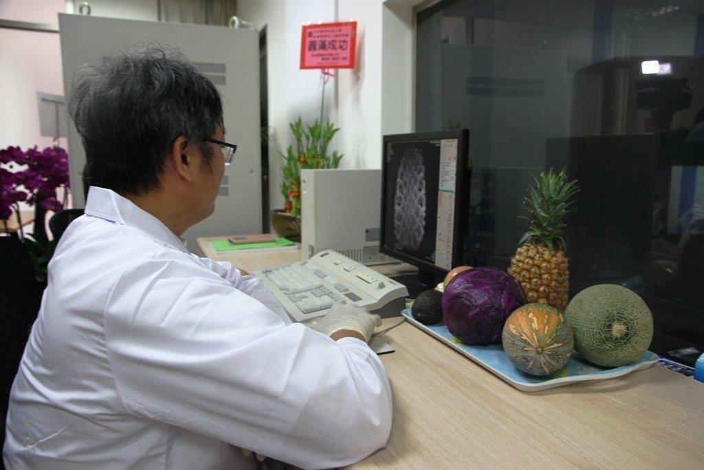 元培影像醫學中心進行果實檢測。 元培/提供