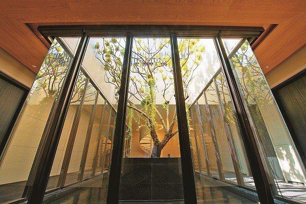 慕軒飯店坐擁綠意,室內也設有空中花園,要讓入住客人彷彿置身森林中。(圖/慕軒提供...