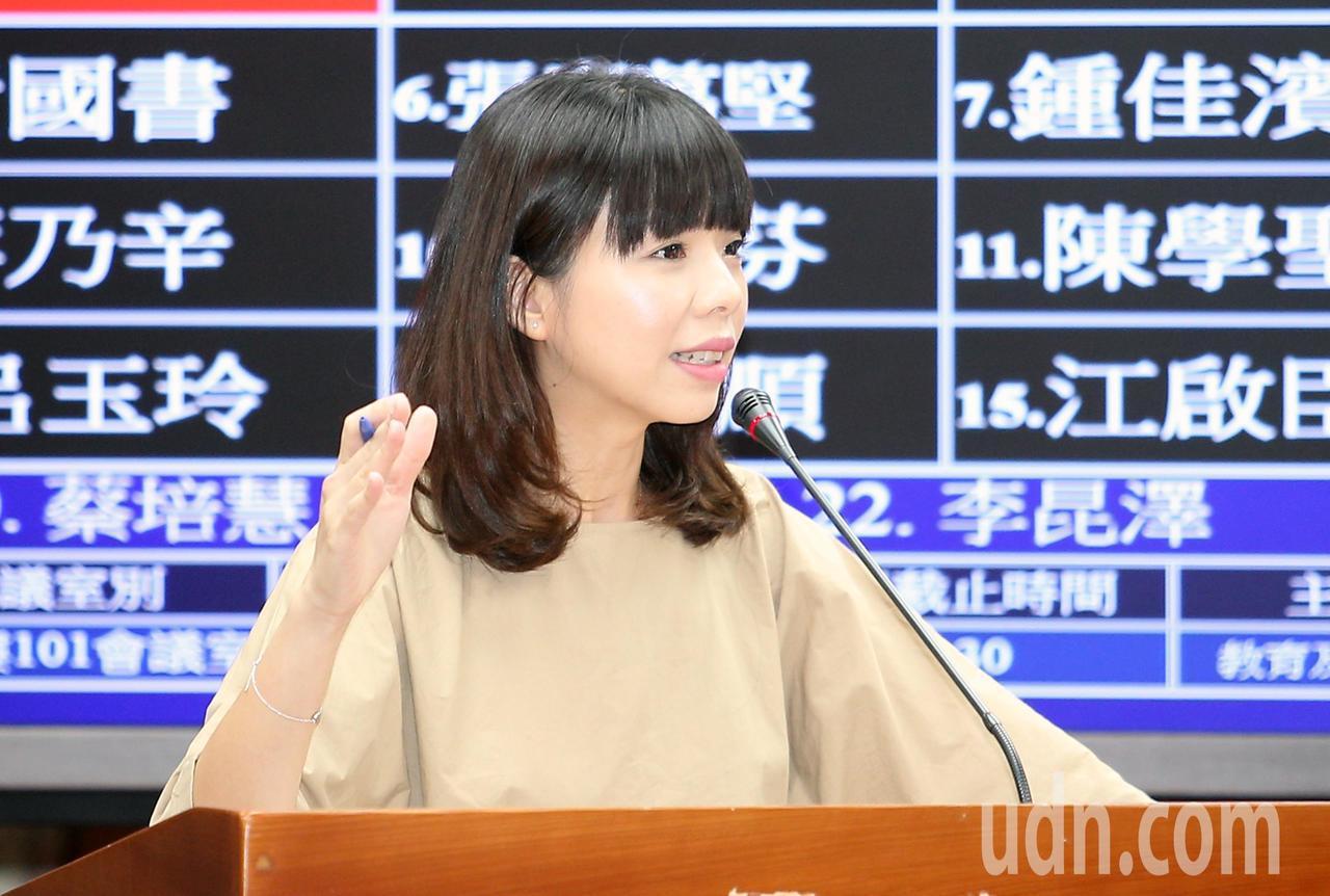立委洪慈庸。報系資料照 記者陳正興/攝影